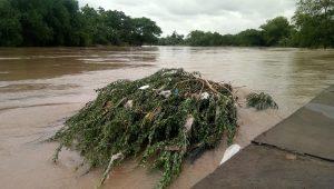 DPUPR Surakarta Sebar Daerah Resapan Air, Cegah Genangan hingga Banjir