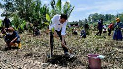 Mitigasi Perubahan Iklim, Presiden Tanam Mangrove Bersama Masyarakat di Cilacap