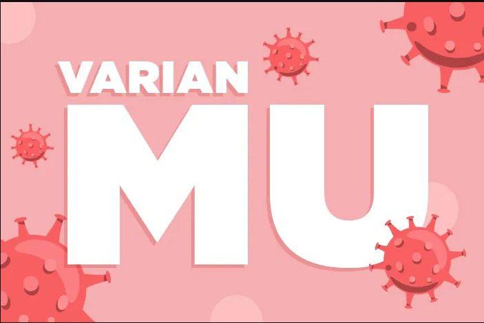 ILUSTARSI- Varian Mu. FOTO: Ist/Lingkar.co