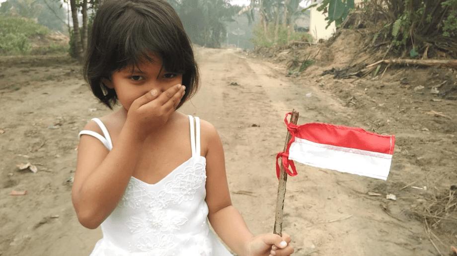 NKRI: Seoranga anak kecil sedang menggenggam sebuah bendera Merah Putih Menyimbolkan NKRI. Pixabay/Lingkar.co